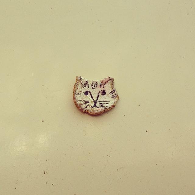 gatoca